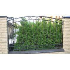 Кованый забор в Могилеве Z71