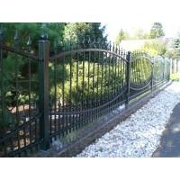 Забор кованый №0137 в Бобруйске